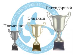 krola.org (4)